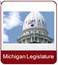 Mich Legislature icon